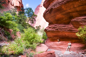 Hiking in the Zion National Park