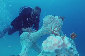 The world's largest and Maldives first 3D-printed reef system was installed at Summer Island.
