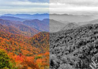 A composite picture showing the mountains of Tennessee in color and grey-scale