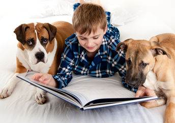Kids reading to shelter dogs