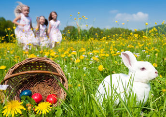 As an Easter bunny sits beside a basket of colorful eggs, children are out searching on an Easter egg hunt.