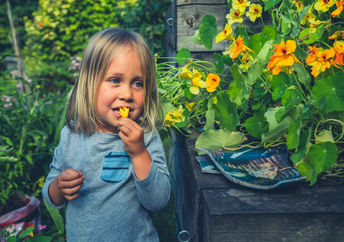 Edible flowers are packed with the best gut health benefits.