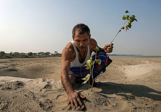 Jadav Payeng has single-handedly reforested a small inland island in India by planting a tree a day for more than 30 years.
