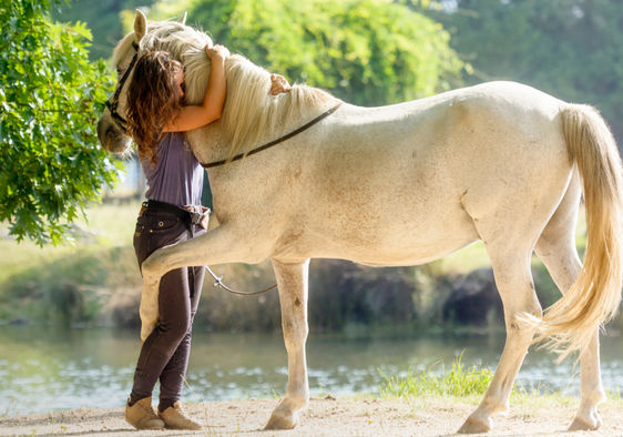 A woman is hugging a retired racehorse.