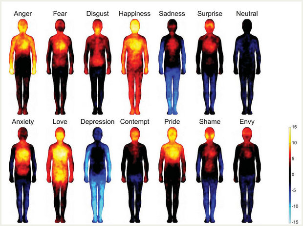 7 Astonishing Facts About the Science of Emotions [LIST] - Goodnet