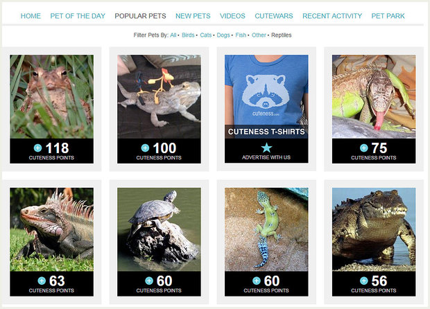 Reptiles Pets List Reptile Pets on Cuteness Inc