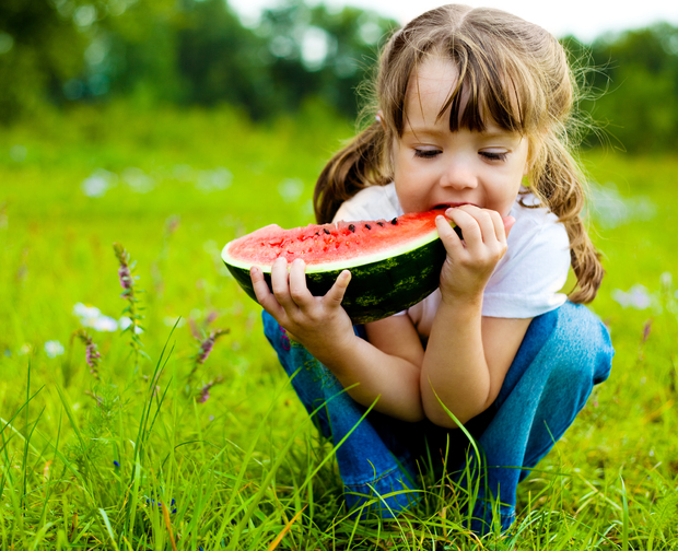 Little girl taking a bite out of watermelon wedge