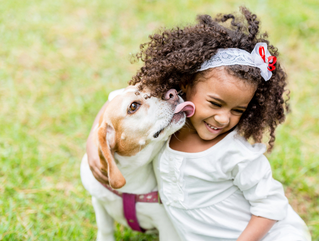 dog licking a little girl's face