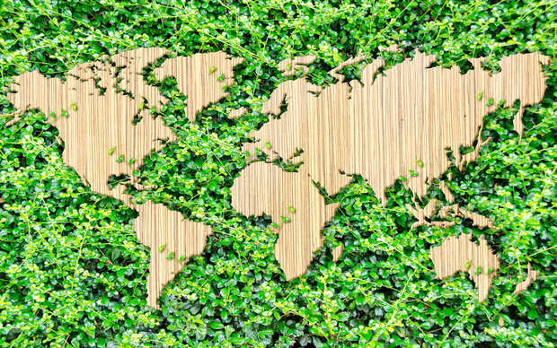 wooden map on the world on a grassy green background