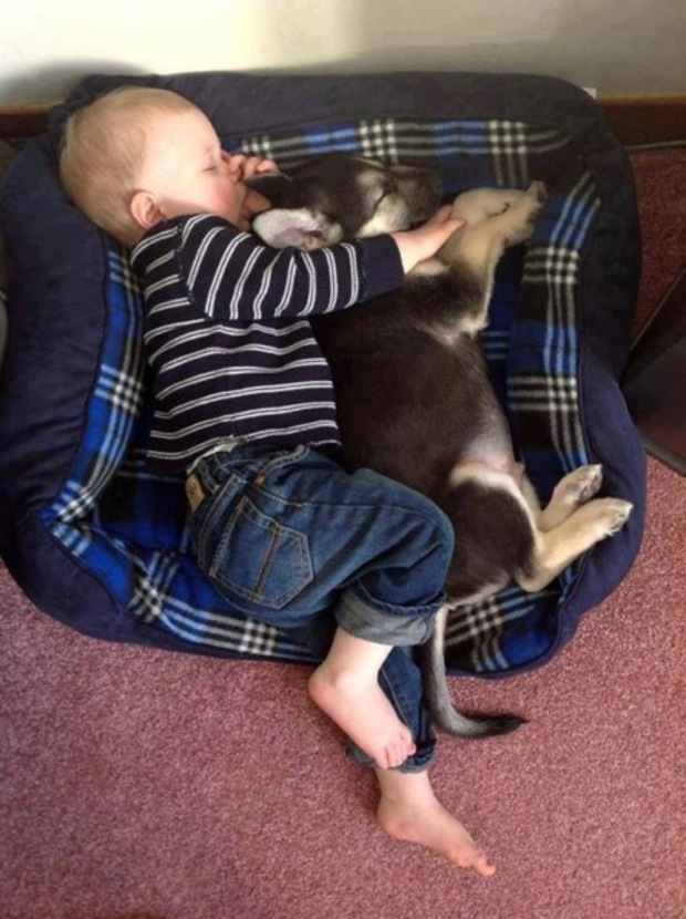 Cute photo of baby with pet dog