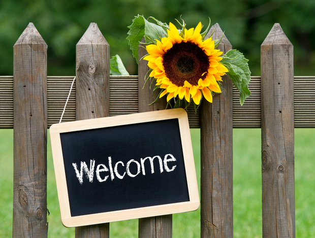 Welcome sign sunflower
