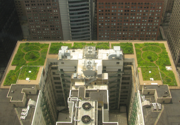 City Hall, Chicago green roof