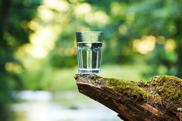Image result for Glass of water in nature