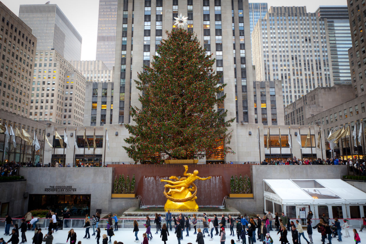 The New York Christmas Tree That Changes Lives All Year - Goodnet