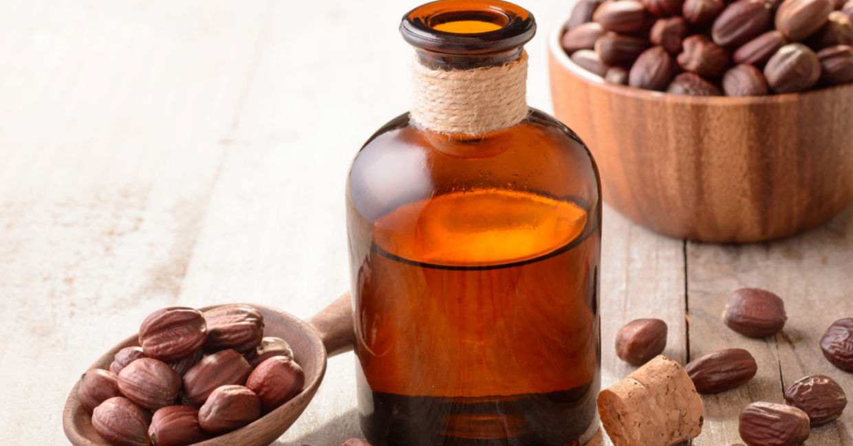 7 Reasons to Welcome Jojoba Oil into Your Life! - Goodnet
